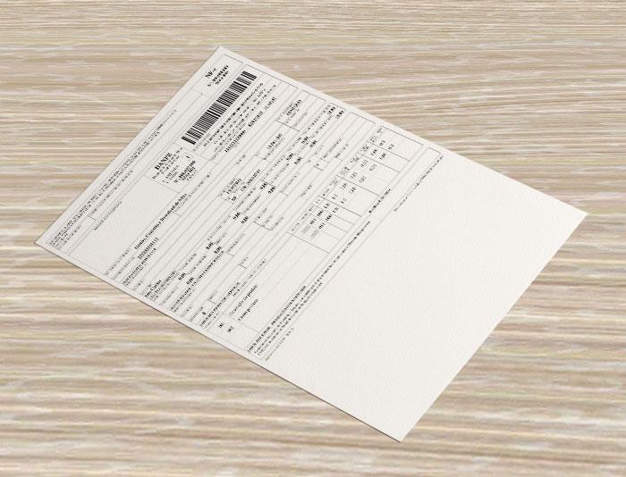 informações DANFE nota fiscal eletronica crsistemaseweb linko comercial gestao