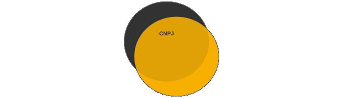 cnpj cpf gestao cr sistemas e web linko comercial